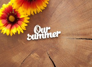 """Чипборд """"Our summer"""""""