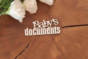 "Чипборд ""Baby's documents"""