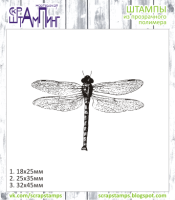 """Dragonfly 1"""